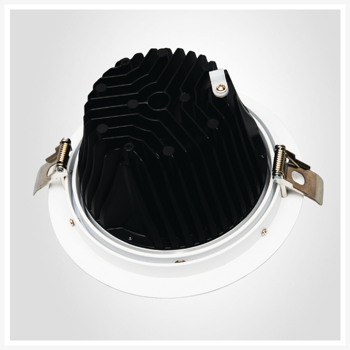 citizen cob rotatable downlight
