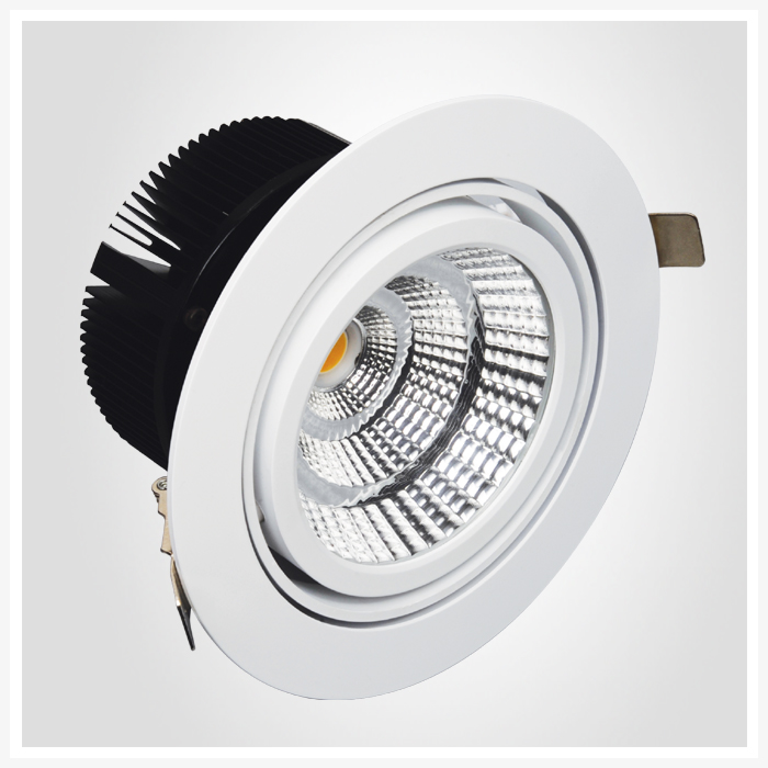 led rotatable downlight